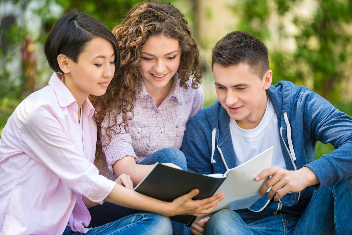 Studiowanie zarządzania – czy jest to przyszłościowy kierunek studiów?